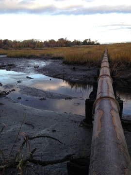 Udalls Cove sewage pipe